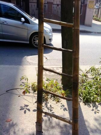 bambuescada1