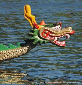 Dragon Boats 2649