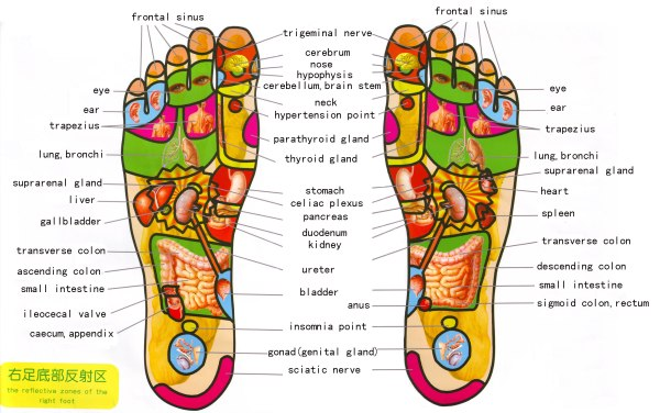 foot%20reflexology