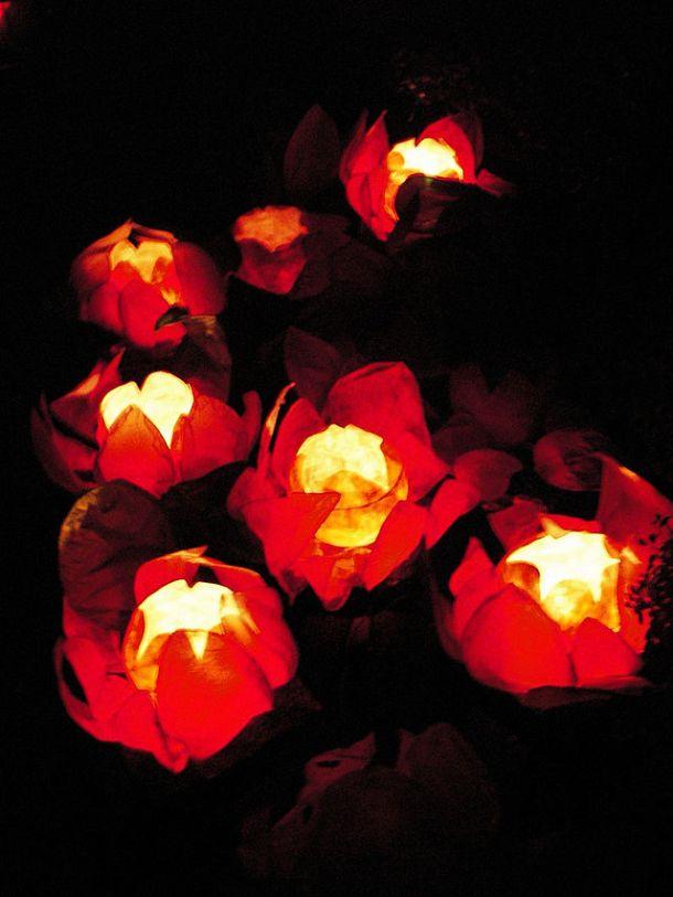 Chinese_floating_lotus_lanterns
