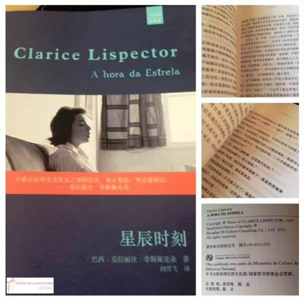 capa do livro, páginas e ficha técnica.