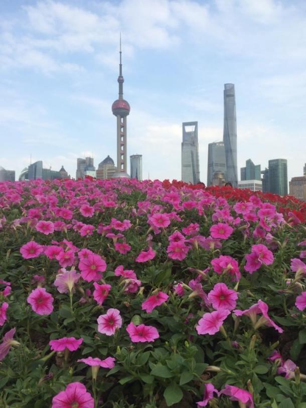 inverno na china