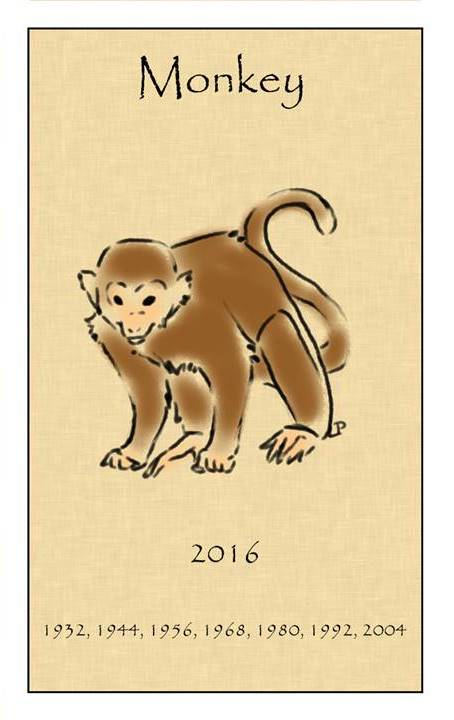 2016 macaco