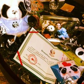 ChengDu – China: Reserva dosPandas!