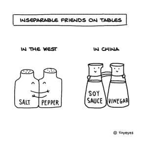 Diferenças culturais (na visão divertida de umachinesa)